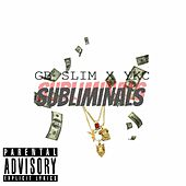 Subliminals by Gbslim