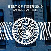 Best of Tiger 2019 de Various Artists