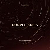 Purple Skies (Shiny House Stars), Vol. 3 de Various Artists