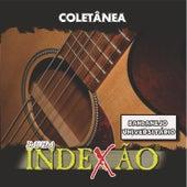 Coletânea von Banda Indexão
