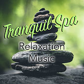 Tranquil Spa Relaxation Music by Spirit