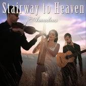 Stairway to Heaven de Trio Amadeus