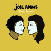 Fake Friends by Joel Adams