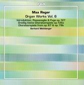 Reger: Organ Works, Vol. 6 de Gerhard Weinberger