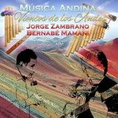 Música Andina: Vientos de los Andes by Jorge Zambrano