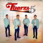 Mi Destino by Grupo Fuerza-5