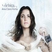 Órbita de Ana Clara Horta