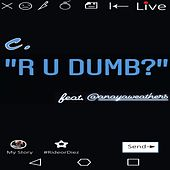 R U Dumb? de Big C