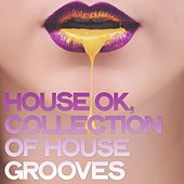 House Ok (Collection of House Grooves) by Various Artists