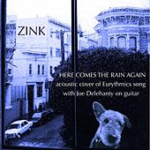 Here Comes the Rain Again (Live) [feat. Joe Delehanty] von Zink