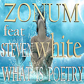 What Is Poetry de Zonum