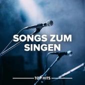 Songs zum Singen von Various Artists
