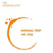Minimal Trip Vol.V de Vily Vinilo