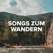 Songs zum Wandern von Various Artists