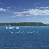 The Vladivostok Concert II de Roon Staal