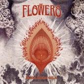 Roda-Roda Gila di Flowers