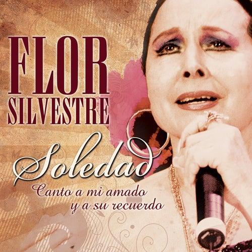 Soledad by Flor Silvestre