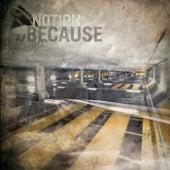 Because / Iota by Notion