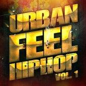 Hip-Hop Urbain, Vol. 1 (Hip-Hop et Rap indé américain) de Multi-interprètes