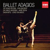 Ballet Adagios de Various Artists