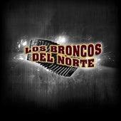 Los Broncos del Norte by Los Broncos del Norte
