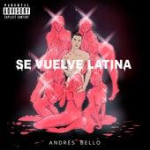Se Vuelve Latina de Andrés Bello
