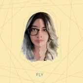 Fly de Abby