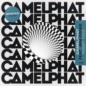 Rabbit Hole (Bontan Remix) von CamelPhat