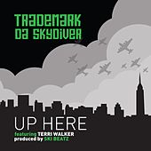 Up Here de Trademark The Skydiver
