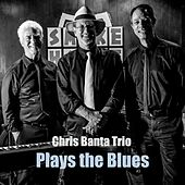 Plays the Blues de Chris Banta Trio
