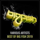 Best of Big Fish 2019 de Various Artists