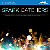 Spark Catchers de Chineke! Orchestra