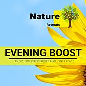 Evening Boost - Music for Stress Relief and Inner Peace de Various Artists