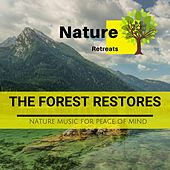 The Forest Restores - Nature Music for Peace of Mind de Various Artists