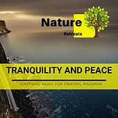 Tranquility and Peace - Soothing Music for Treating Insomnia de Various Artists