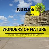 Wonders of Nature - Music for Yoga and Mindfulness de Various Artists