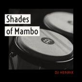Shades of Mambo von DJ Henrix