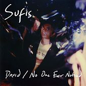 David / No One Ever Noticed by The Sufis
