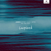 Capsized by James Carter