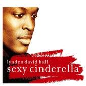 Sexy Cinderella by Lynden David Hall