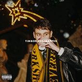 Timberlaketrapped by CA$HANOVA BULHAR