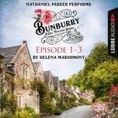 Bunburry - A Cosy Mystery Compilation, Episode 1-3 (Unabridged) von Helena Marchmont