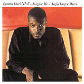 Forgive Me (Artful Dodger Mixes) by Lynden David Hall
