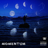 Momentum by Profit