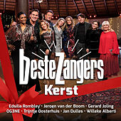 Beste Zangers Kersteditie 2019 de Various Artists