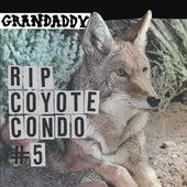 RIP Coyote Condo #5 by Grandaddy