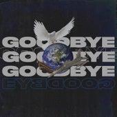 Goodbye by theMNM