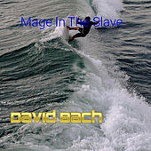Mage In The Slave by David Bach