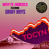 Tocyn by Whyte Horses