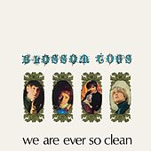 We Are Ever So Clean by Blossom Toes